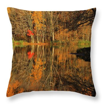 A Reflection Of October Throw Pillow by Karol Livote