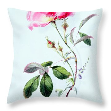 A Rose Throw Pillow by James Holland