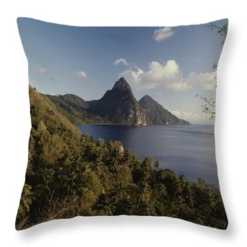 A Scenic View Of Mountains And Water Throw Pillow