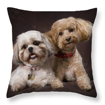 A Shihtzu And A Poodle On A Brown Throw Pillow by Corey Hochachka