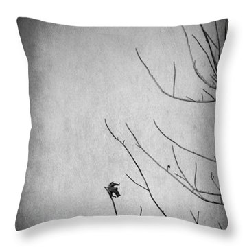 A Sign Of Things To Come Throw Pillow by Laurie Search