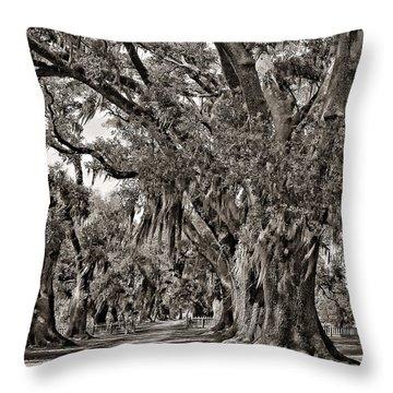 A Stroll Through Time Monochrome Throw Pillow by Steve Harrington