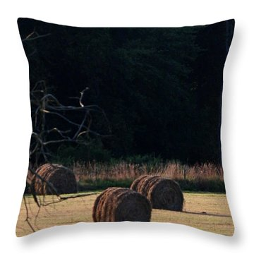 A Summer Evening Throw Pillow