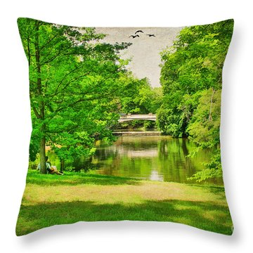 A Summer's Day Throw Pillow by Darren Fisher