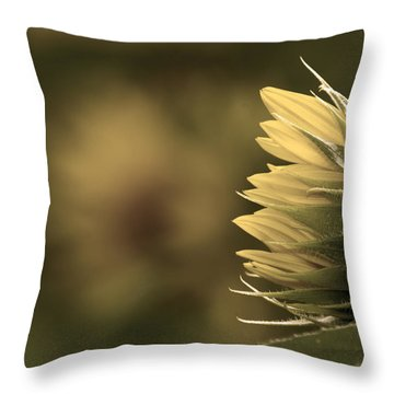 A Touch Of Sepia  Throw Pillow