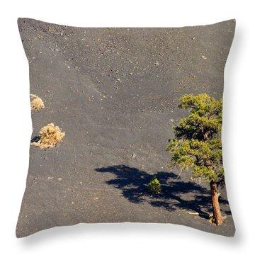 A Tough Neighborhood Throw Pillow by Mike  Dawson