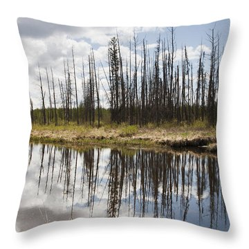 Throw Pillow featuring the photograph A Tranquil River With A Reflection by Susan Dykstra