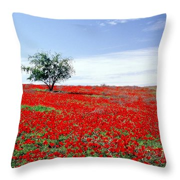 A Tree In A Red Sea Throw Pillow by Dubi Roman