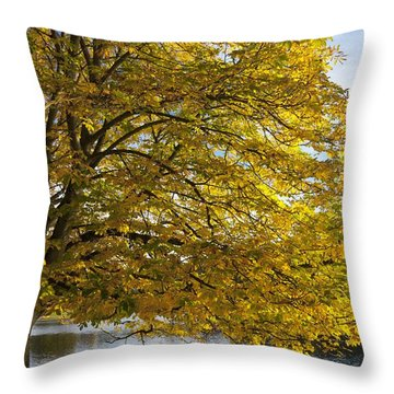 A Tree With Golden Leaves And A Park Throw Pillow by John Short