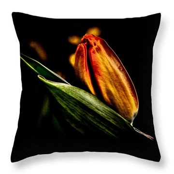 A Tulip With Sheen Throw Pillow by David Patterson