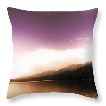 A Twist Of Fate Throw Pillow by Janie Johnson