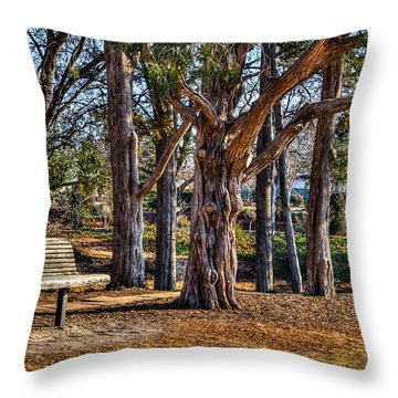 A Walk In The Park Throw Pillow by Doug Long