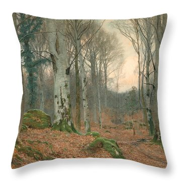 A Welsh Wood In Winter Throw Pillow by JT Watts