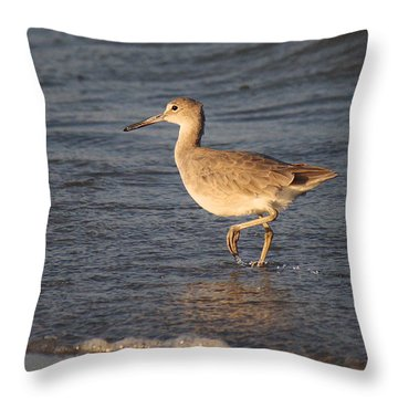 A Willet By The Shore Throw Pillow by Roena King