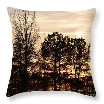 Throw Pillow featuring the photograph A Winter's Eve by Maria Urso