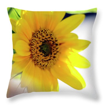 A Wish For Sunshine In Your Day Throw Pillow