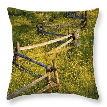 A Wooden Rail Fence Surrounded By Throw Pillow by David Chapman