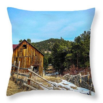 Abandoned Barn Throw Pillow by Shannon Harrington