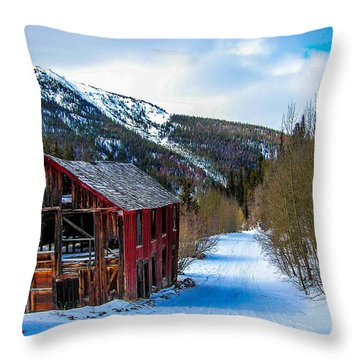Abandoned Building Throw Pillow by Shannon Harrington