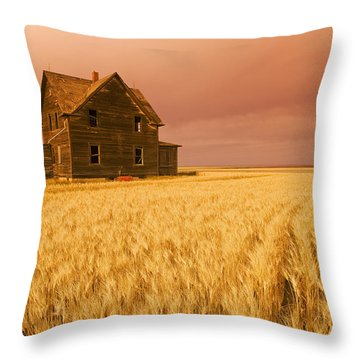 Abandoned Farm House, Wind-blown Durum Throw Pillow by Dave Reede