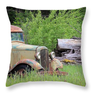 Throw Pillow featuring the photograph Abandoned by Steve McKinzie