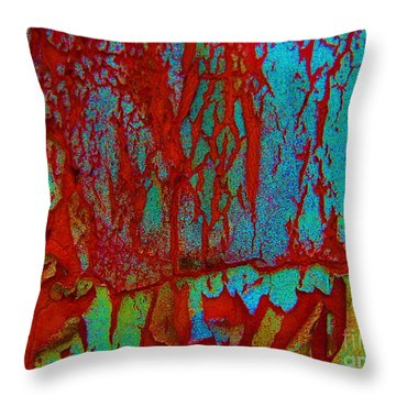 Throw Pillow featuring the photograph Abby Crack by Amy Sorrell