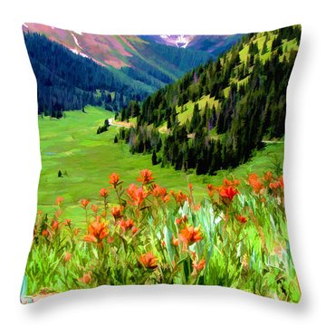 Above The Valley Throw Pillow