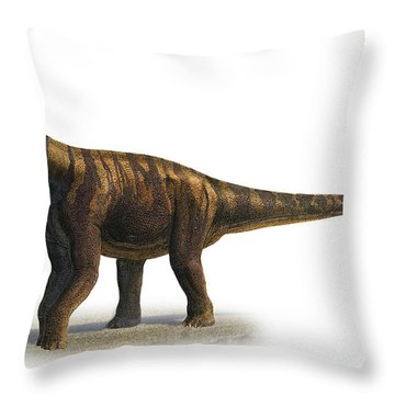 Abrosaurus Dongpoi, A Prehistoric Era Throw Pillow by Sergey Krasovskiy