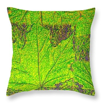 Abstract Fusion 38 Throw Pillow by Will Borden