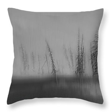 Abstruse Throw Pillow