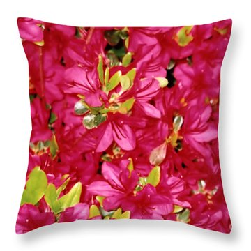 Abundant Azaleas Throw Pillow