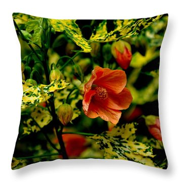 Throw Pillow featuring the photograph Abutilon  by Tanya  Searcy