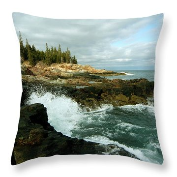 Acadia On The Shore Throw Pillow