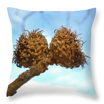 Acorns Have Left The Nest Throw Pillow by Kent Lorentzen