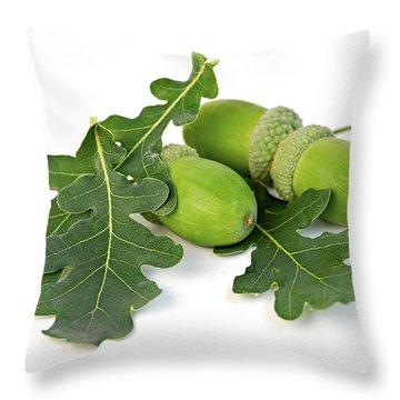 Acorns With Oak Leaves Throw Pillow by Elena Elisseeva