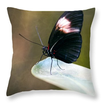 Acrophobia Throw Pillow by Charles Dobbs