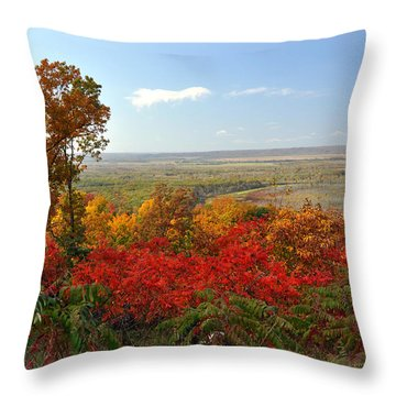 Across The Big Muddy Throw Pillow by Marty Koch