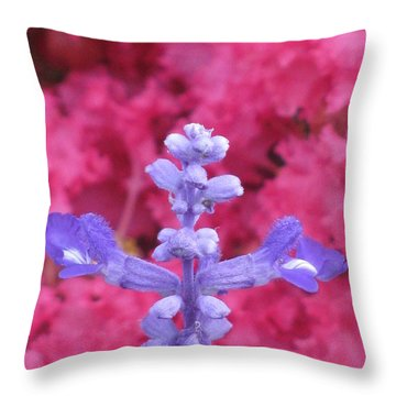 Throw Pillow featuring the photograph Across by Tina Marie