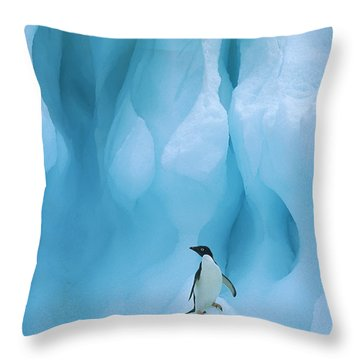 Adelie Penguin Pygoscelis Adeliae Throw Pillow by Colin Monteath