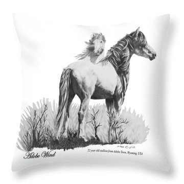 Adobe Wind Throw Pillow