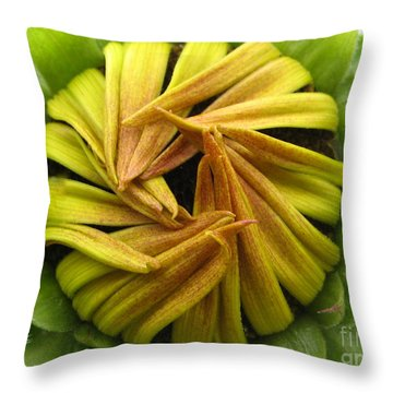 Throw Pillow featuring the photograph Afraid Photography by Tina Marie