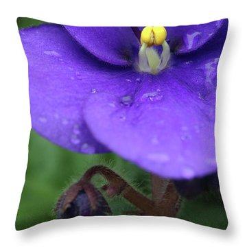 African Violet Throw Pillow by Neil Overy