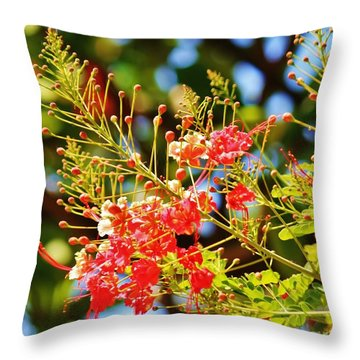 After The Blossoms Fall Throw Pillow by Craig Wood
