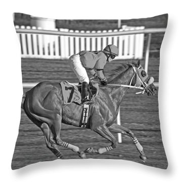 After The Crossing  Throw Pillow by Betsy Knapp