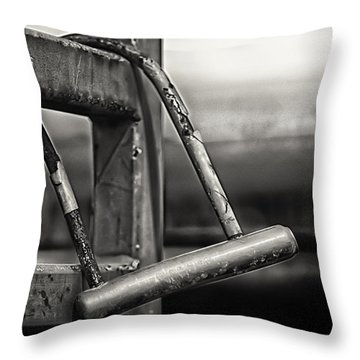 Throw Pillow featuring the photograph After The Horse Has Bolted by Tom Gort