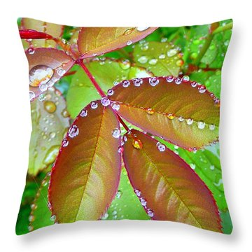 After The Rain 2 Throw Pillow