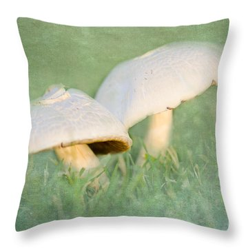 After The Rain Throw Pillow by Betty LaRue