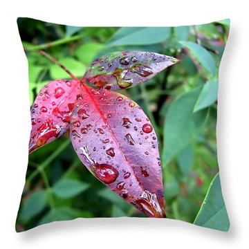 After The Rain Throw Pillow by Carolyn Marshall