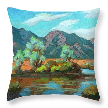 After The Rain Throw Pillow by Diane McClary