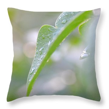 Throw Pillow featuring the photograph After The Rain by JD Grimes